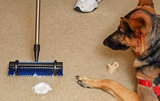 carpet stain removal fast easy